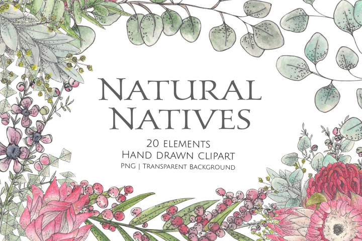 Natural Natives Watercolour Clipart and Graphics