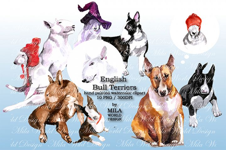 Watercolor English Bull Terriers clip art