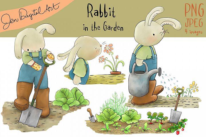 Rabbit in the Garden | Clip art illustration | JPEG/PNG