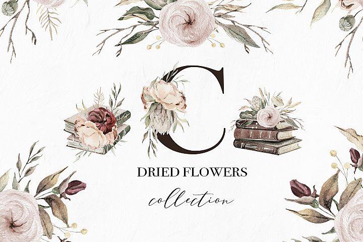Dried flowers watercolor collection, books and arrangements