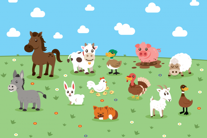 Farm Lovely Animals