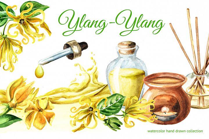 Ylang-Ylang. Watercolor collection