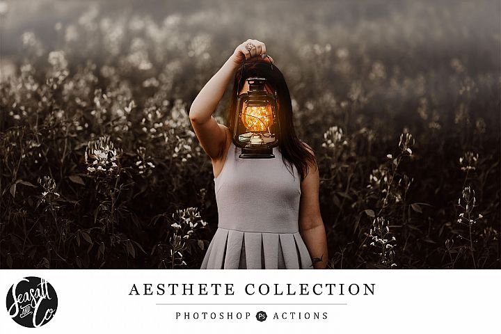 Aesthete Action Collection