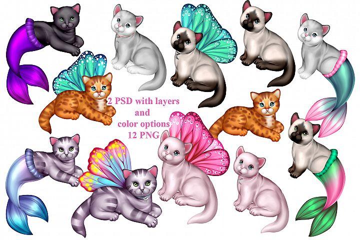 Magic Kittens
