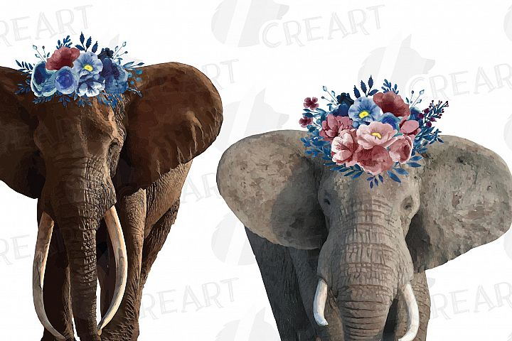 Elephant with floral crown match shirt watercolor clip art