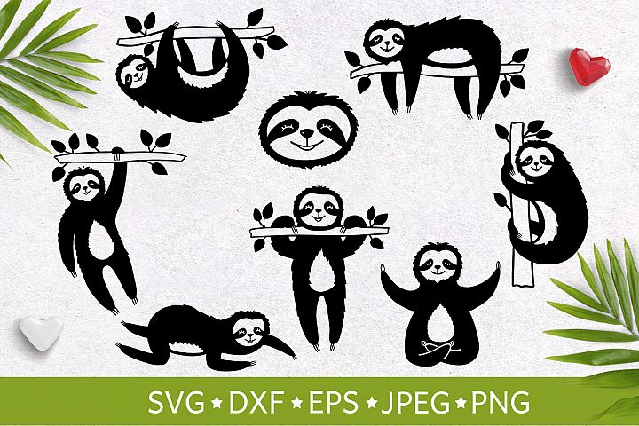 Set of handdrawn cute funny slothes. Vector illustration SVG