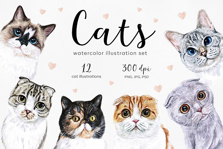 Watercolor cat illustrations. Cute 12 cats. Kitty. Meow
