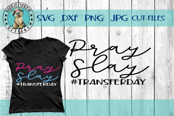 Pray Slay Transder Day - IVF, Fertility, Support - SVG