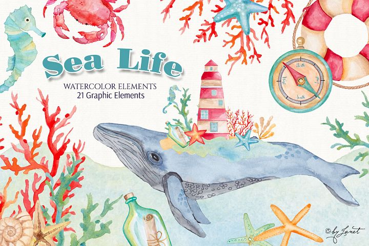Sea Life Watercolor