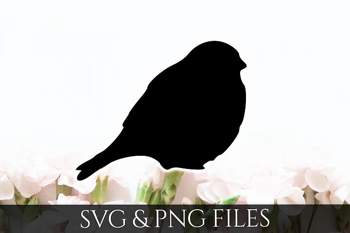 Bird SVG & PNG File