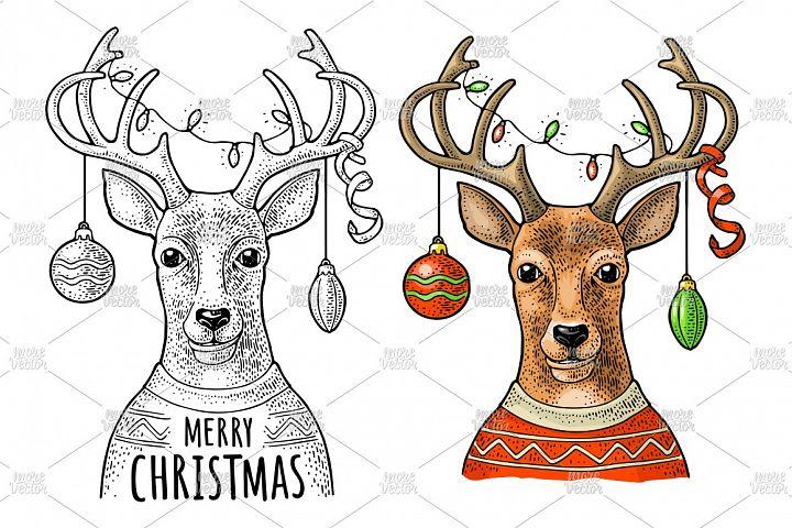 Deer christmas garland dressed sweater. Vintage engraving