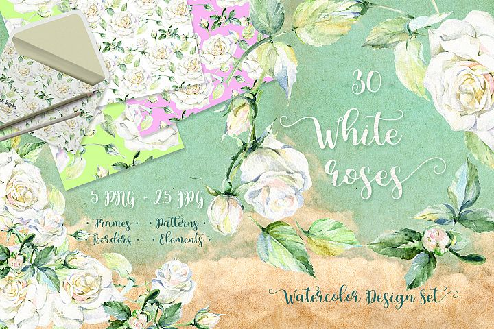 Delicate white roses PNG watercolor set