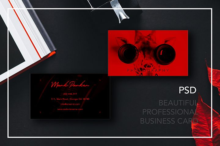 Professional Photography new business card
