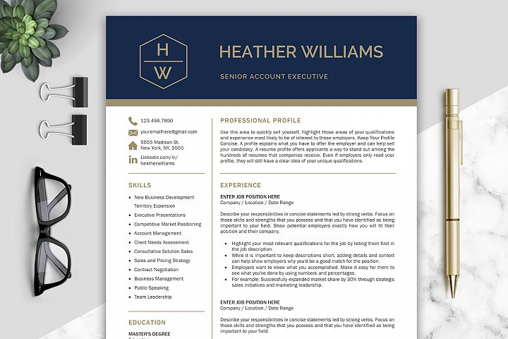 Resume Template / CV Templates, Professional Resume Template