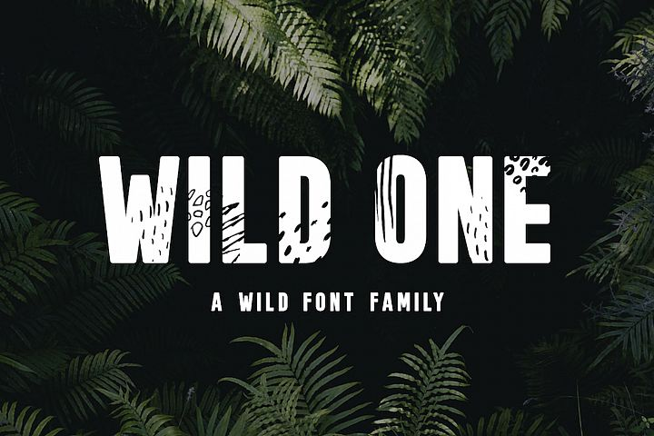 Wild One - A Wild Font Family