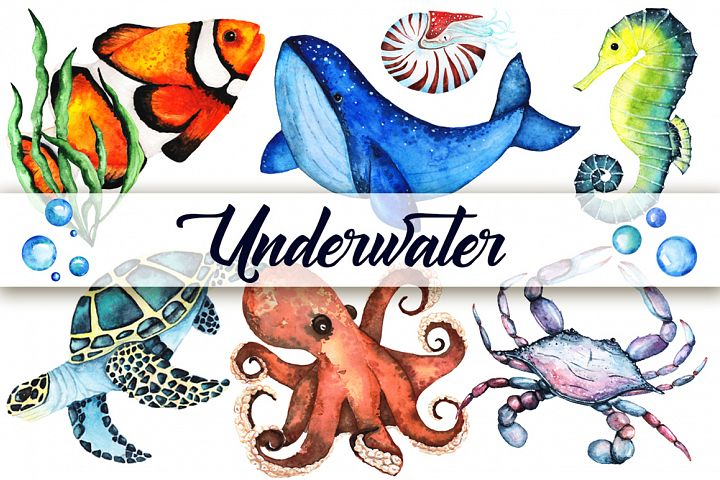 Watercolor set of sea animals