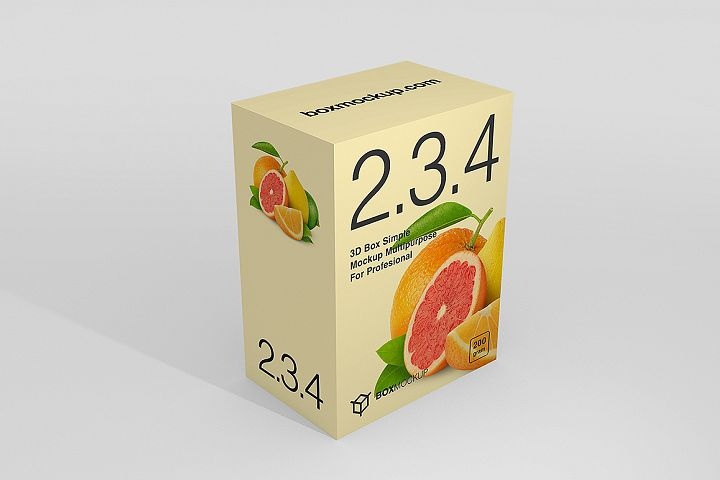 2.3.4 Simple 3D Box Mockup PSD