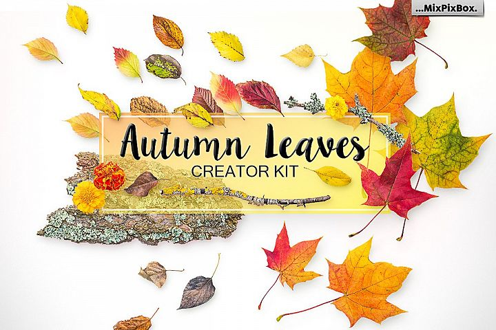 Autumn Leaves - Creator Kit