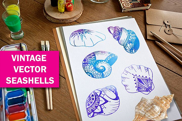 hand-drawn vintage vector shells
