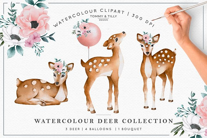 Watercolour Deer Collection - Wedding Baby Flower Clipart PN