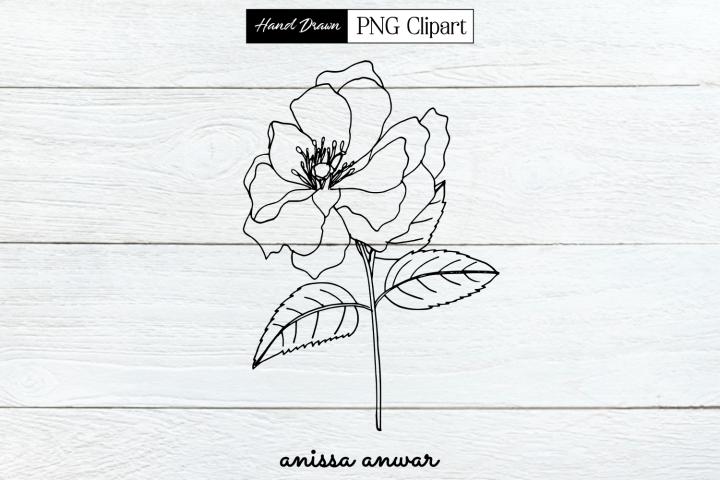 Flower Line Art, Png Clipart, Sublimation, Printable