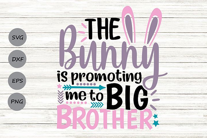 The Bunny Is Promoting Me To Big Brother Svg, Easter Svg.