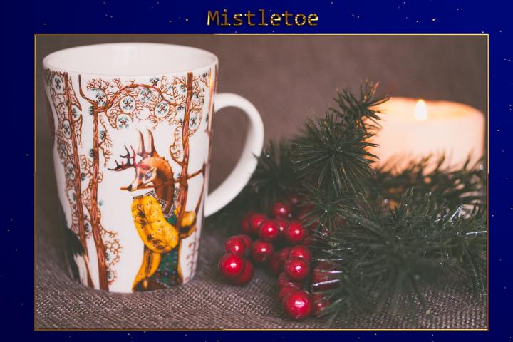 XMAS - Mistletoe Lr Presets