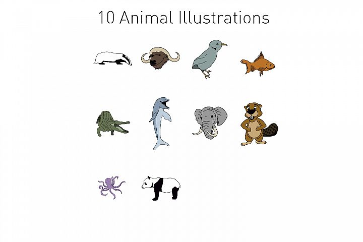 10 Animal Illustrations
