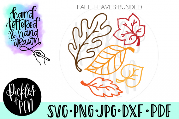 Fall Leaves Bundle - Hand drawn Leaf