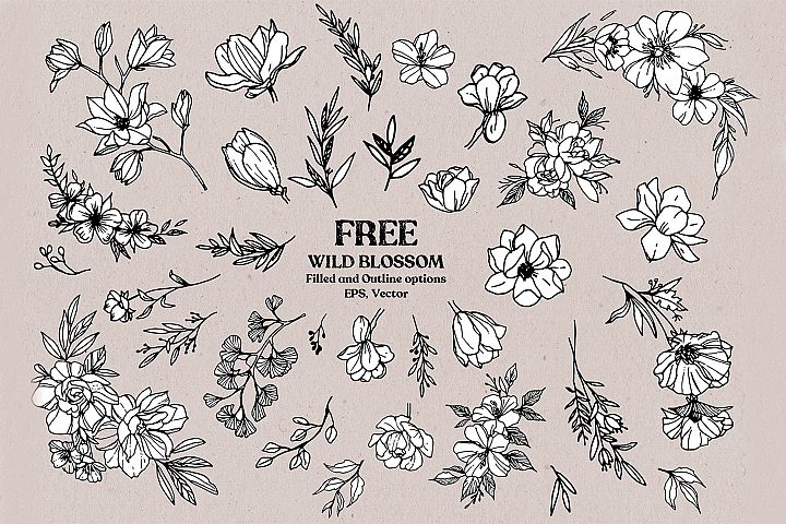 Wild Blossom - Hand sketched Floral & Botanical elements example 2