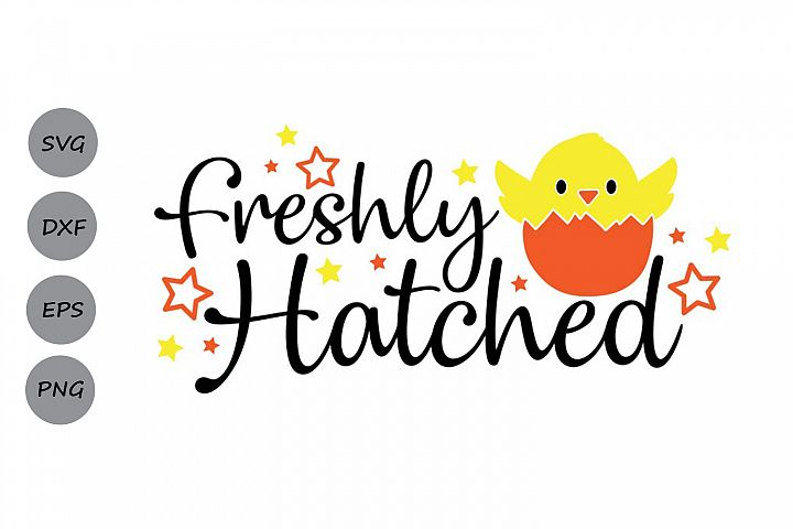 Freshly Hatched Svg, Easter Svg, Easter Chick Svg, Baby Svg.