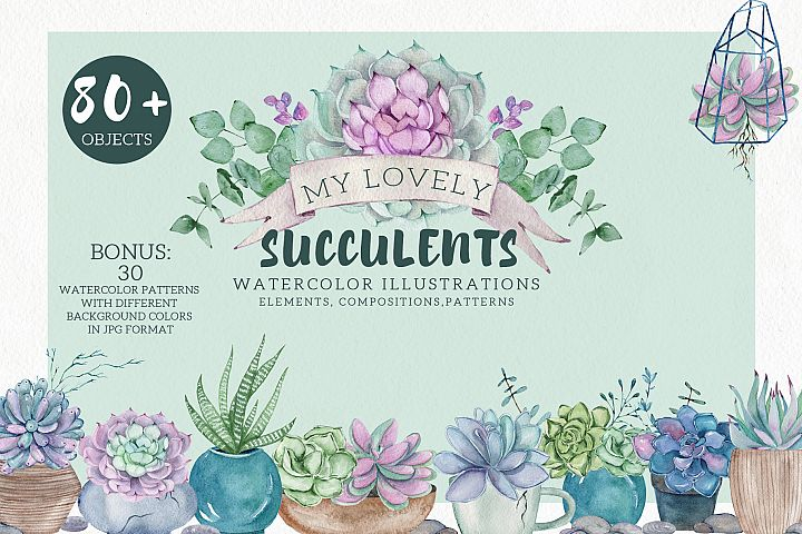 My Lovely Succulents. Watercolor Set