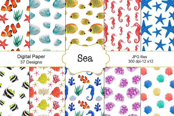 Watercolor fish sea pattern
