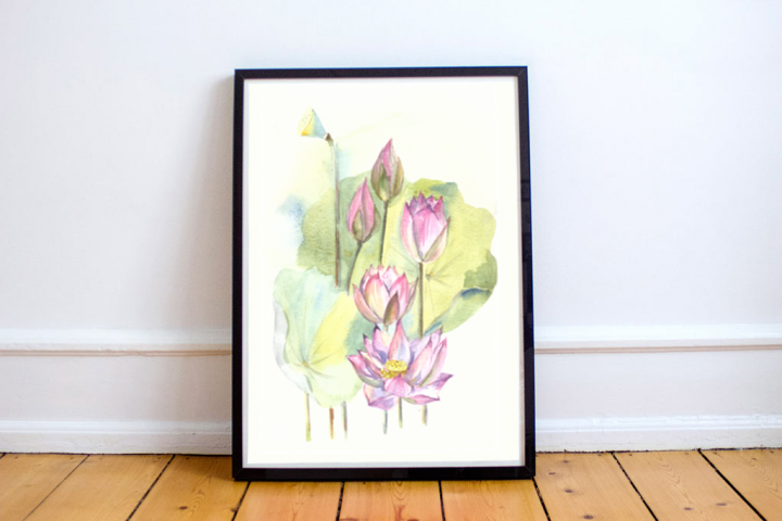 Watercolor Waterlily Illustration