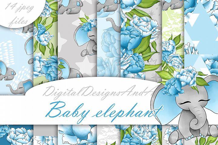 Baby elephant in blue