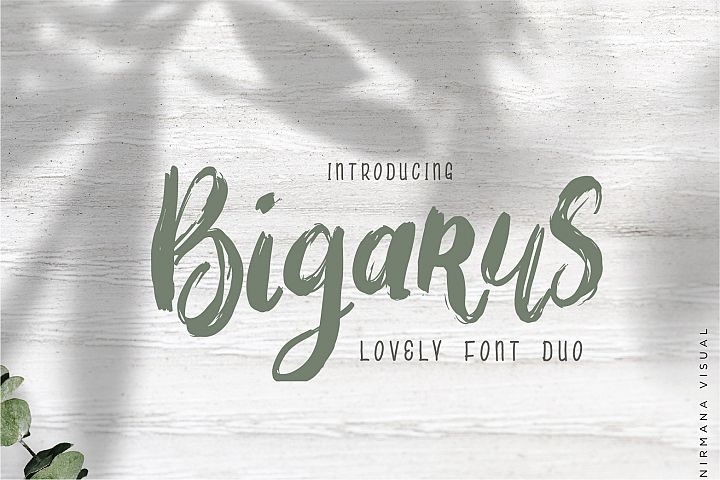 Bigarus - Font Duo