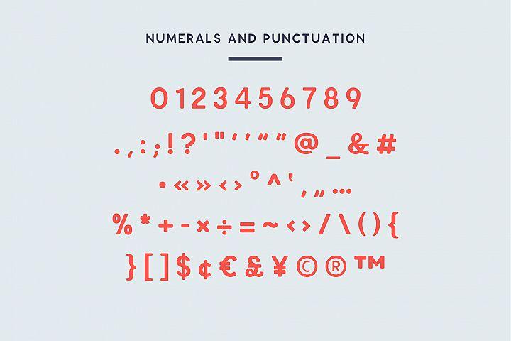 Enrique - 8 Fonts Fashionable Elegant Sans Serif Font example image 3