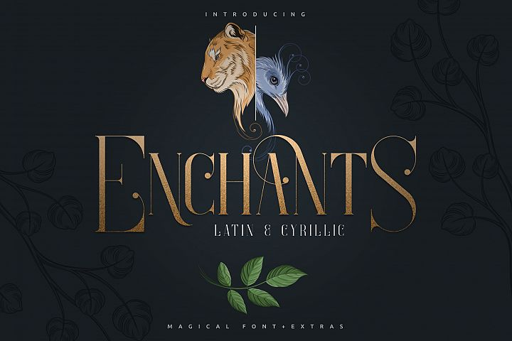 Enchants - Magical font - Extras