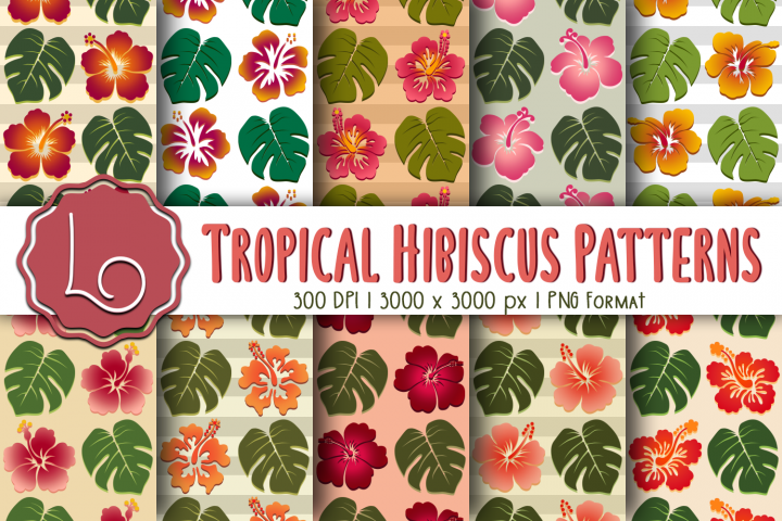 Tropical Hibiscus Patterns