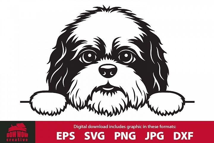 Peeking Shih Tzu Puppy- SVG, EPS, JPG, PNG & DXF files