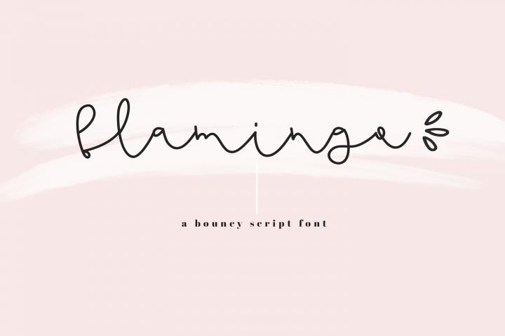 Flamingo - Handwritten Script Font