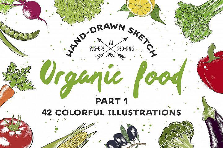 Set of 42 organic food sketches
