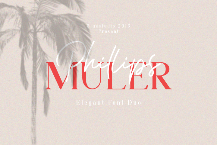 Phillips Muler // Elegant Font Duo