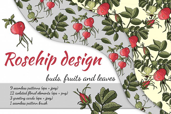 Design with buds, leaves and fruits of rose hip.
