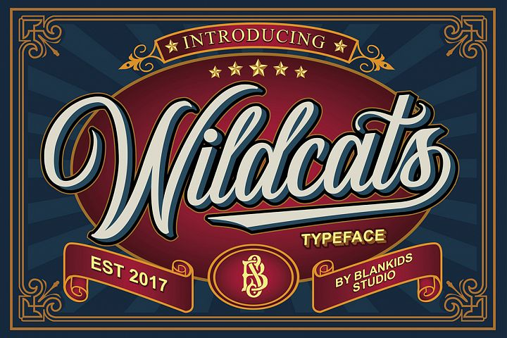 Wildcats Typeface (40% off)