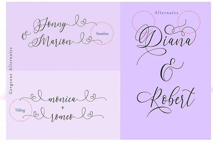 Dialova - Beautiful Calligraphy - Free Font of The Week Design 7