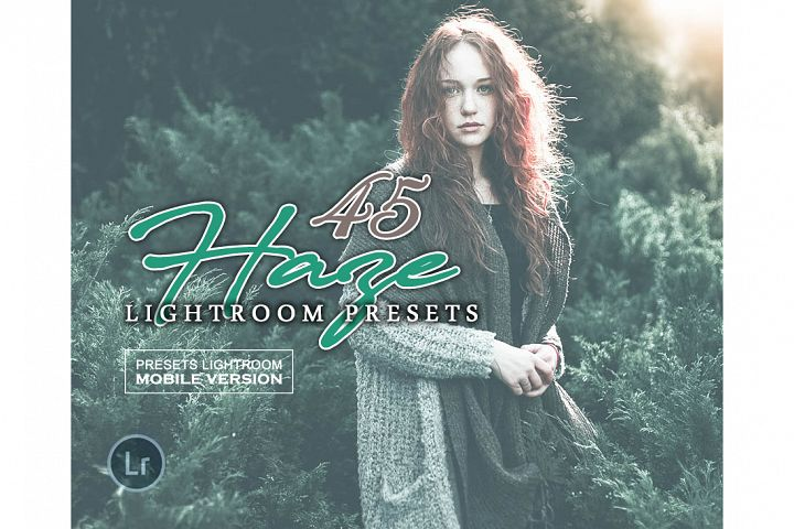 Haze Lightroom Presets Mobile Presets Adroid and Iphone/Ipad