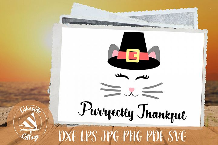Thanksgiving Cat face with Pilgrim hat - Purrfectly thankful