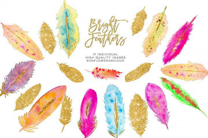 Watercolor Feathers clipart Download