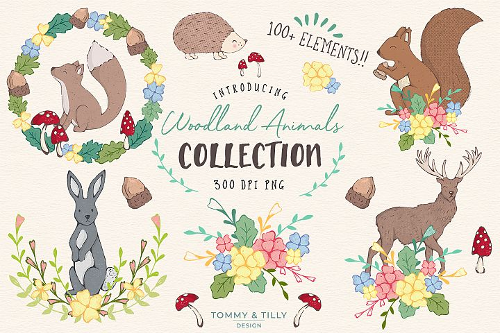 Woodland Animals Clipart Graphics Collection